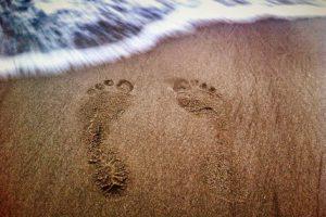 pasos por la vida